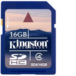 Kingston 16GB SD Card